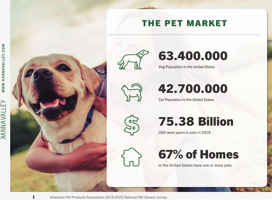 Crece imparable la industria del cannabis medicinal para mascotas